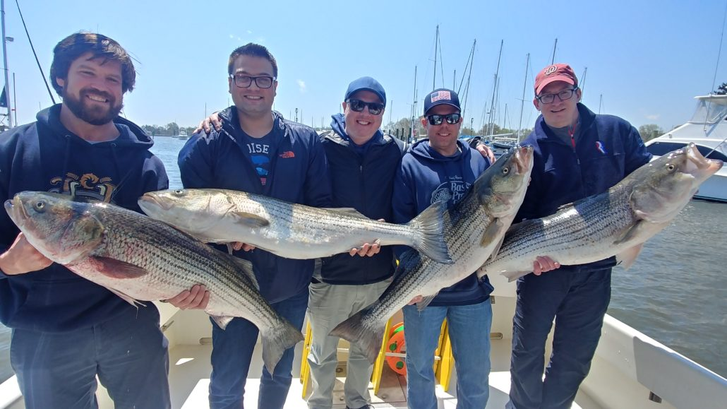 Chesapeake bay fishing charter time to book your for Fishing report chesapeake bay