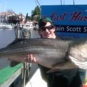 striped bass fishing charters